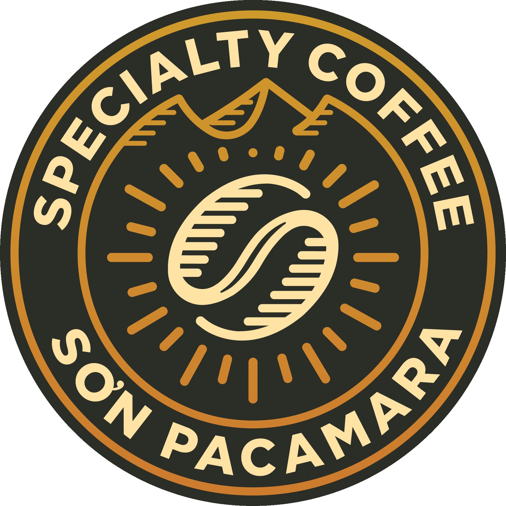 Sơn Pacamara
